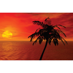 1098 - Palm Tree w/ Sunset