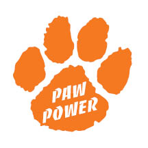 2222 - Orange Paw Power