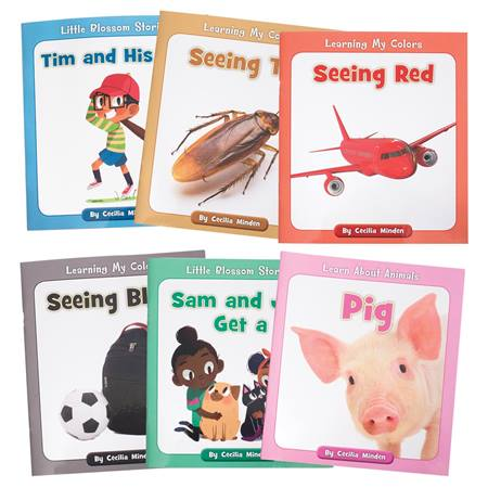 Beginning Reader Book Set