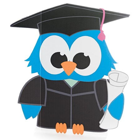 Blue Graduation Owl Kit